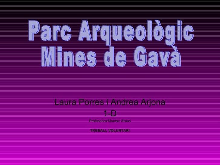 Laura Porres i Andrea Arjona 1-D Professora:Montse Alsius TREBALL VOLUNTARI Parc Arqueològic  Mines de Gavà