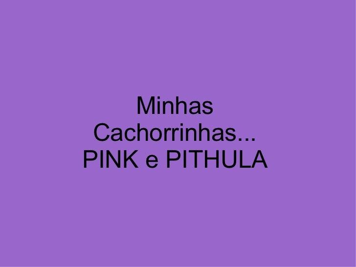 Minhas Cachorrinhas... PINK e PITHULA