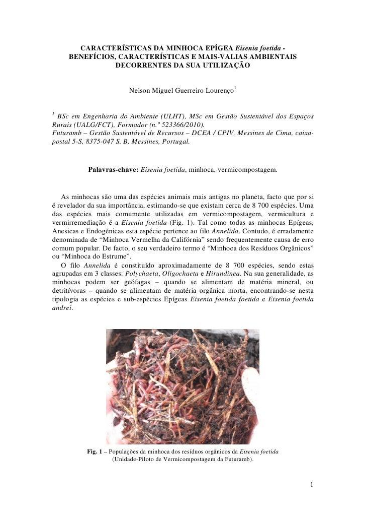 CARACTERÍSTICAS DA MINHOCA EPÍGEA Eisenia foetida -      BENEFÍCIOS, CARACTERÍSTICAS E MAIS-VALIAS AMBIENTAIS             ...