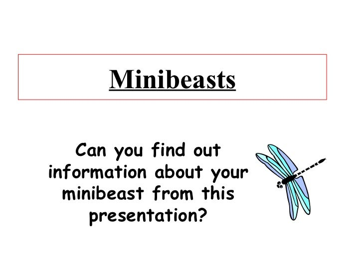 Minibeasts Can you find out information about your minibeast from this presentation?