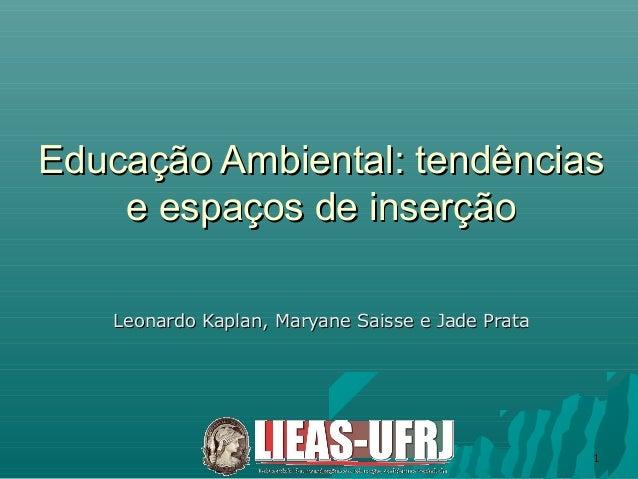 11Educação Ambiental: tendênciasEducação Ambiental: tendênciase espaços de inserçãoe espaços de inserçãoLeonardo Kaplan, M...