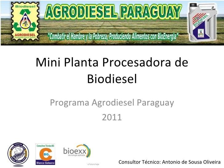 Mini Planta Procesadora de Biodiesel Programa Agrodiesel Paraguay 2011 Consultor Técnico: Antonio de Sousa Oliveira