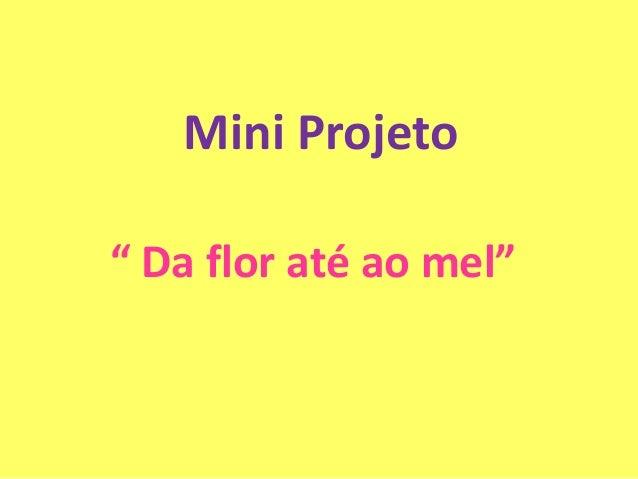 """Mini Projeto"""" Da flor até ao mel"""""""