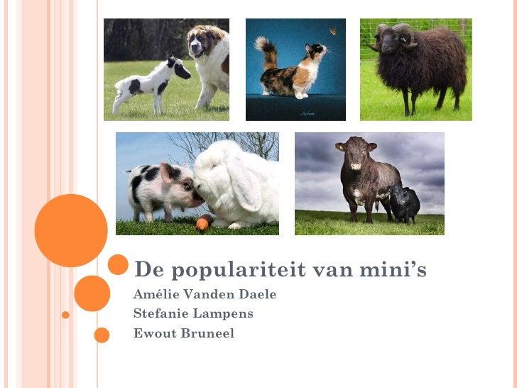 De populariteit van mini's Amélie Vanden Daele Stefanie Lampens Ewout Bruneel