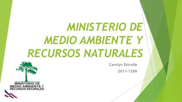 Ministerio de ambiente