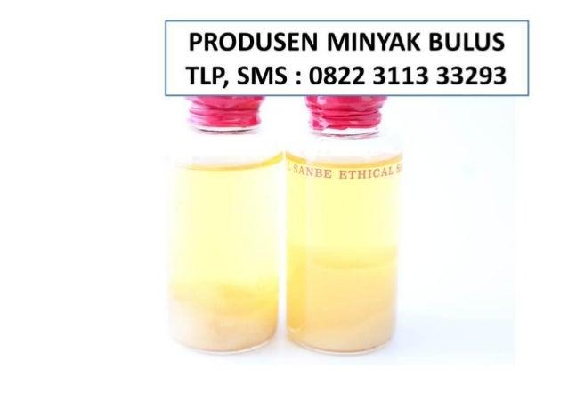 Minyak Bulus Momo NO TLP 0822 3113 3293 Sidoarjo Minyak