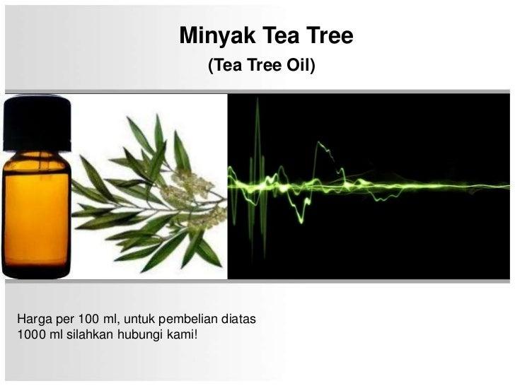Minyak Tea Tree                               (Tea Tree Oil)Harga per 100 ml, untuk pembelian diatas1000 ml silahkan hubun...