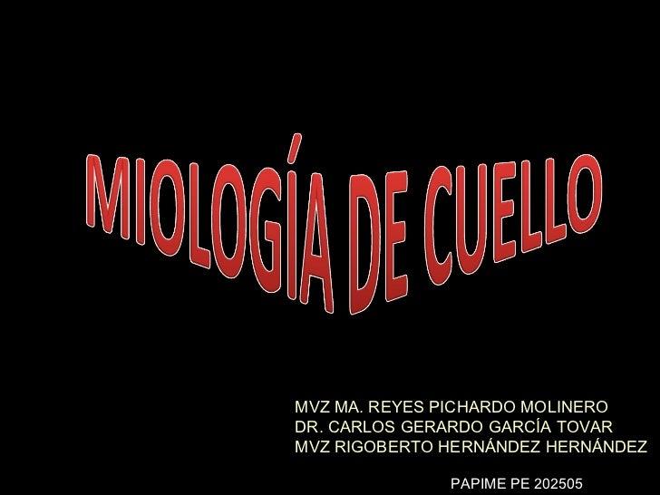 MVZ MA. REYES PICHARDO MOLINERO DR. CARLOS GERARDO GARCÍA TOVAR MVZ RIGOBERTO HERNÁNDEZ HERNÁNDEZ PAPIME PE 202505