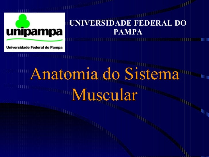 Anatomia do Sistema Muscular UNIVERSIDADE FEDERAL DO PAMPA