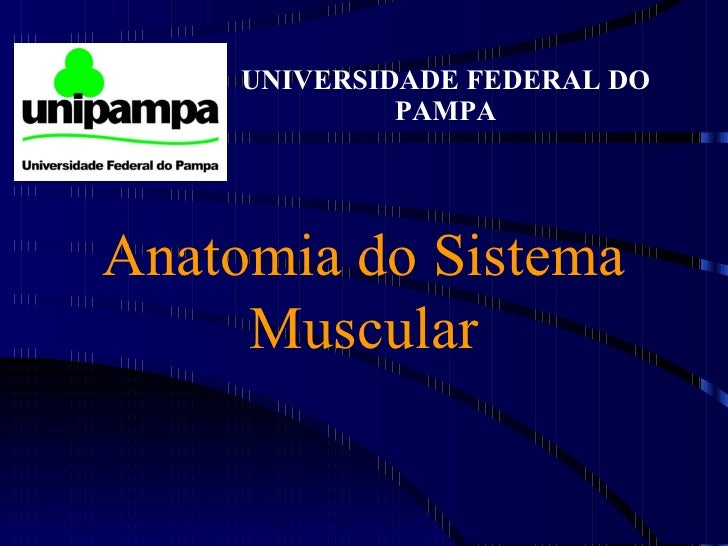 Anatomia do Sistema Muscular UNIVERSIDADE FEDERAL DO PAMPA