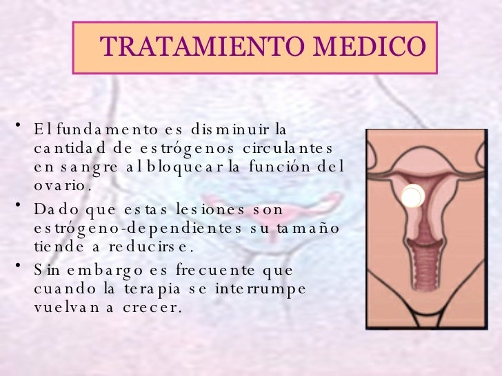 <ul><li>El fundamento es disminuir la cantidad de estrógenos circulantes en sangre al bloquear la función del ovario.  </l...