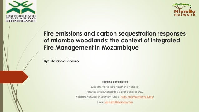 Fire emissions and carbon sequestration responses of miombo woodlands: the context of Integrated Fire Management in Mozamb...