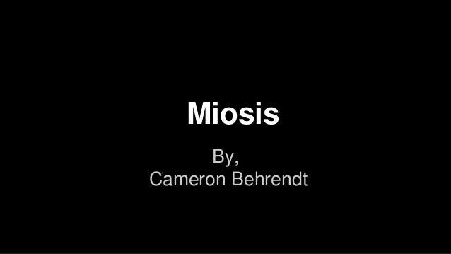 Miosis By, Cameron Behrendt