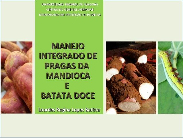 UNIVERSIDADE FEDERAL DE ALAGOAS CENTRO DE CIENCIAS AGRARIAS DOUTORADO EM PROTEÇÃO DE PLANTAS  MANEJO INTEGRADO DE PRAGAS D...