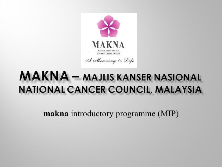 makna  introductory programme (MIP)