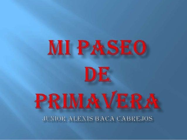 EN LA PRIMAVERA MI FAMILIA Y YO , FUIMOS DE PASEO AL RECREO TURISTICO «EL MIRADOR».  SALIENDO DE CASA A LAS 10:00 AM. 