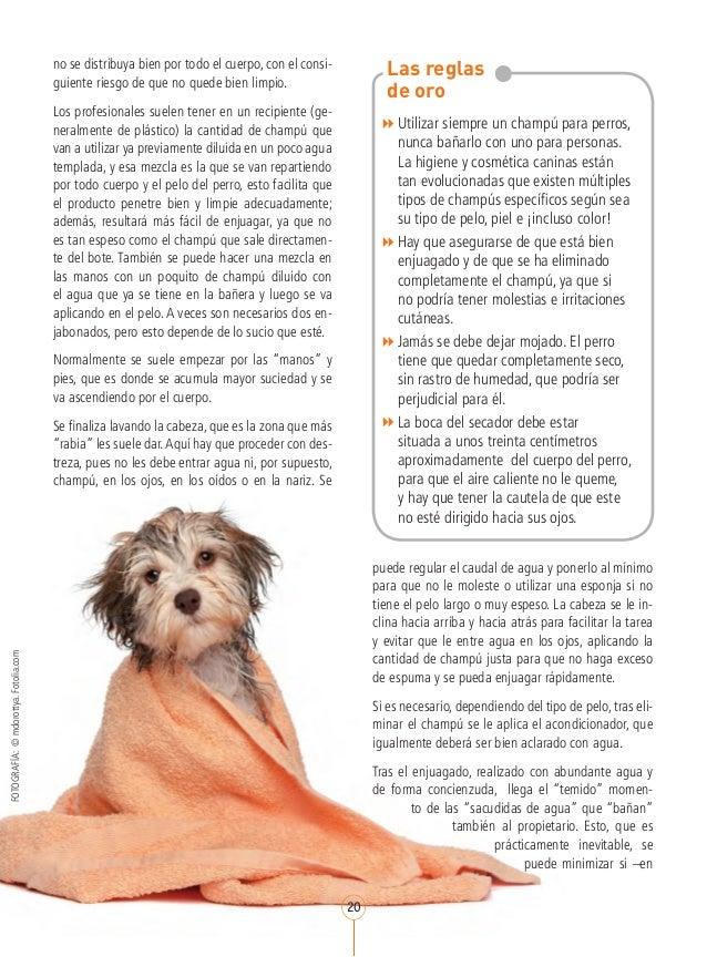 Mi perro y_yo_num2_marzo_2013