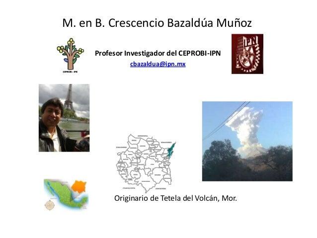 M. en B. Crescencio Bazaldúa MuñozProfesor Investigador del CEPROBI-IPNcbazaldua@ipn.mxOriginario de Tetela del Volcán, Mor.