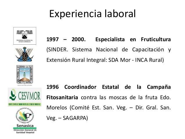 1997 – 2000. Especialista en Fruticultura(SINDER. Sistema Nacional de Capacitación yExtensión Rural Integral: SDA Mor - IN...