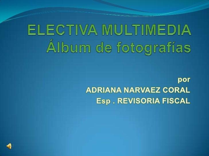 ELECTIVA MULTIMEDIAÁlbum de fotografías<br />por <br />ADRIANA NARVAEZ CORAL<br />Esp . REVISORIA FISCAL<br />