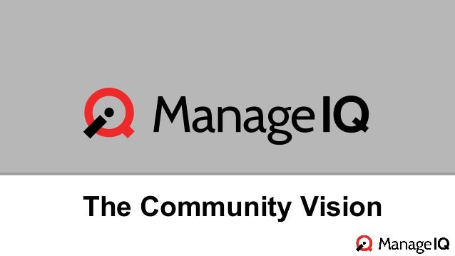 The Community Vision