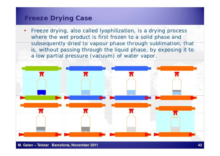 Freeze Drying Case   • Freeze drying, also called lyophilization, is a drying process     where the wet product is first f...