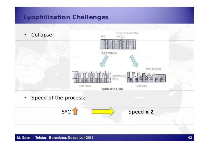 Lyophilization Challenges   • Collapse:   • Speed of the process:                         5ºC                  Speed x 2M....