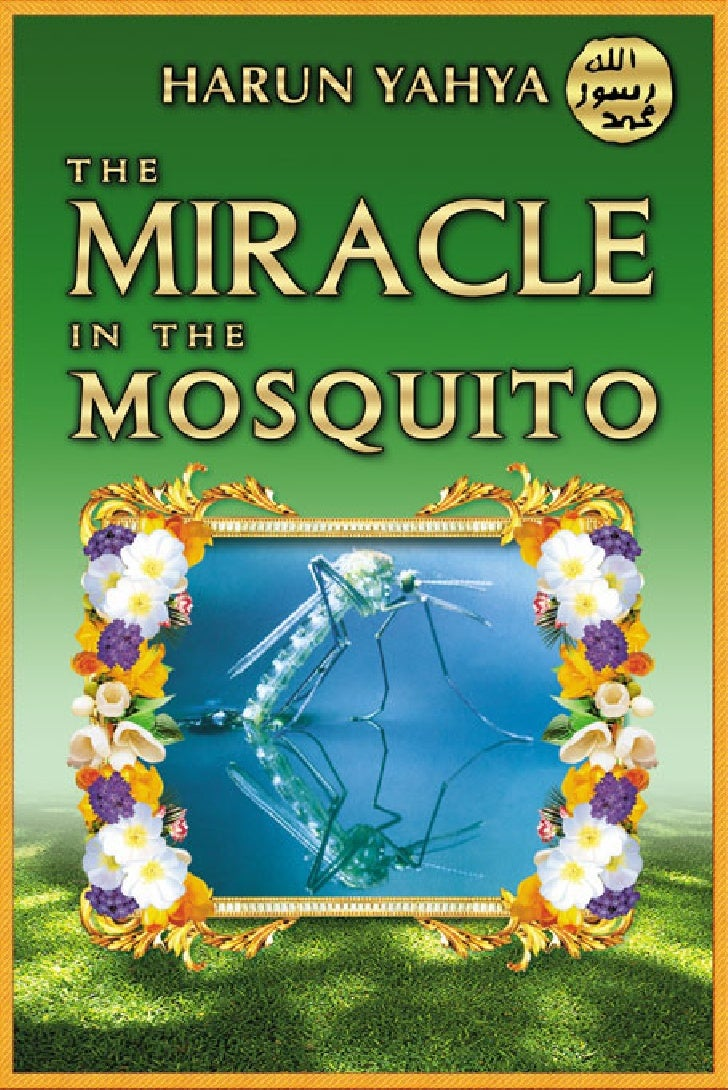 Miracle In The Mosquito