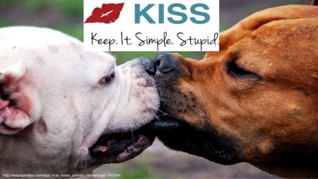 @aviranmhttp://wallpaperbeta.com/dogs_kiss_noses_animals_hd-wallpaper-242054/