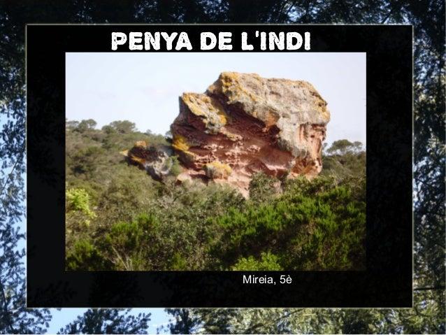 PENYA DE LINDIMireia, 5è