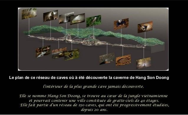 l'intérieur de la plus grande cave jamais découverte. Elle se nomme Hang Son Doong, se trouve au cœur de la jungle vietnam...