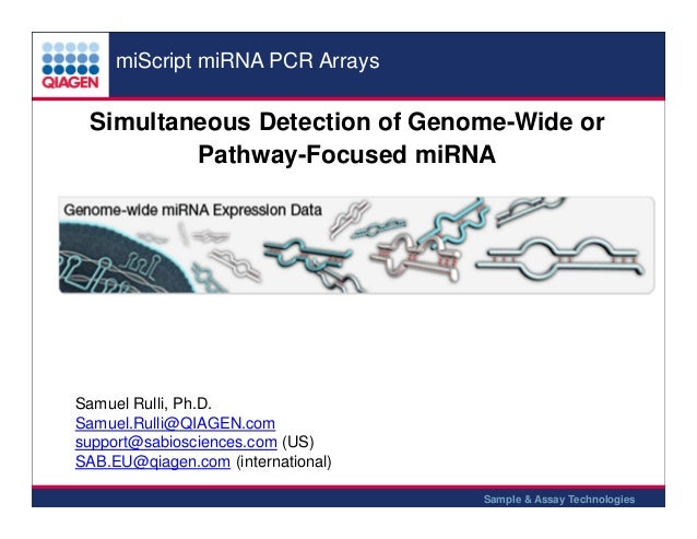 miScript miRNA PCR Arrays  Simultaneous Detection of Genome-Wide or Pathway-Focused miRNA  Samuel Rulli, Ph.D. Samuel.Rull...