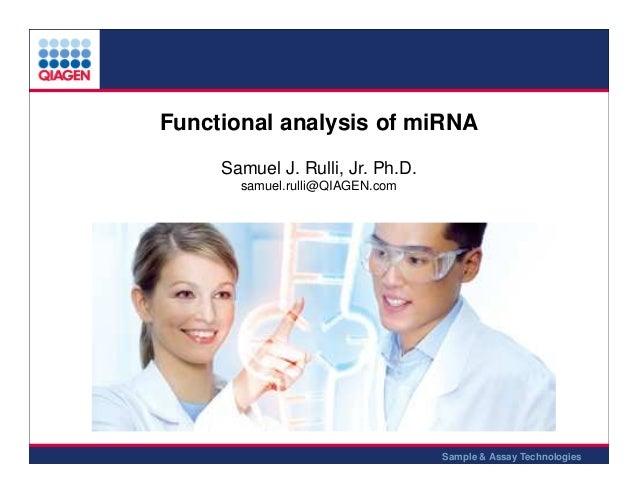 Functional analysis of miRNA Samuel J. Rulli, Jr. Ph.D. samuel.rulli@QIAGEN.com  Sample & Assay Technologies