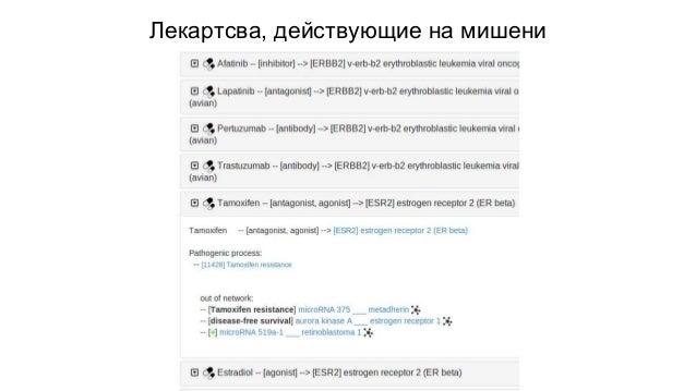 Александр Фокин, CEO MirOB bifurc8@gmail.com http://mirob.interactome.ru +7 910 452 44 84