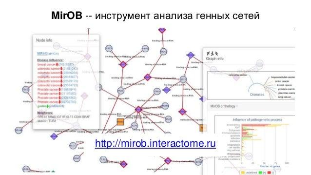 Фокин А. Анализ и визуализация генных сетей