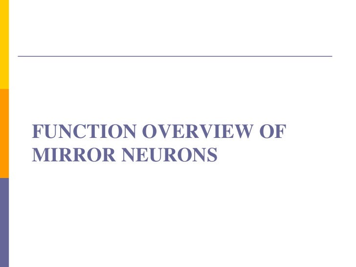 role of mirror neuron system mns in autism Effect of oxytocin administration on mirror neuron activation  behaviors as the mirror neuron system (mns  evidence for mirror neuron dysfunction in autism.