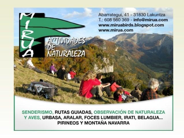El Guía de Naturaleza Facilitar al participante: • Interpretar el territorio, su flora, su fauna y aves, su cultura, su ge...