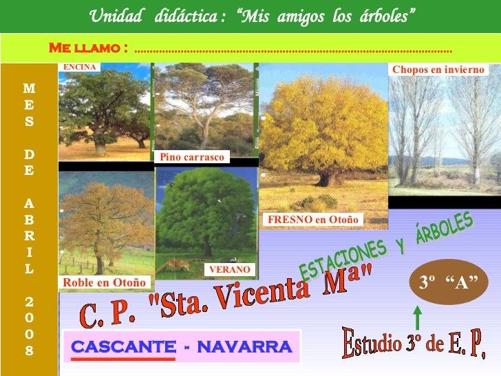 """Unidad  didáctica :  """"Mis  amigos  los  árboles"""" Me llamo :   ..............................................................."""