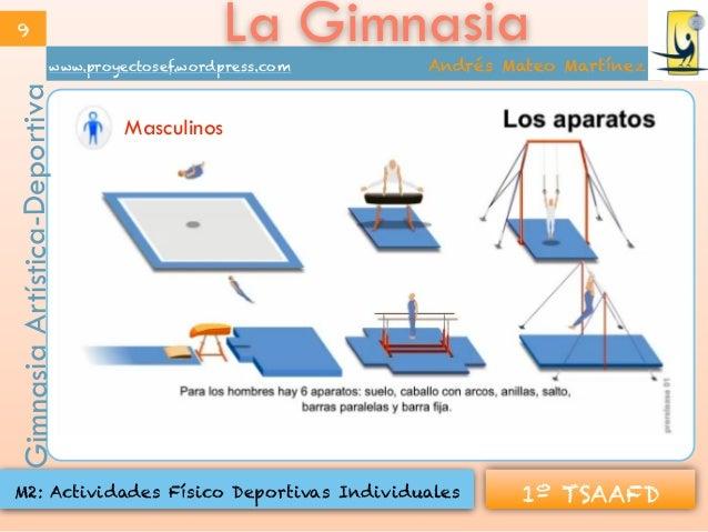La gimnasia modalidades for Gimnasia con aparatos