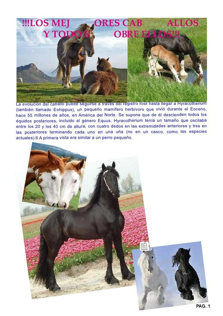 La evolución del caballo puede seguirse a través del registro fósil hasta llegar a Hyracotherium(también llamado Eohippus)...