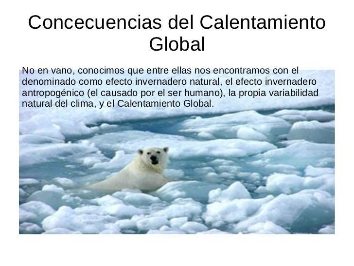 Concecuencias del Calentamiento Global No en vano, conocimos que entre ellas nos encontramos con el denominado como efecto...