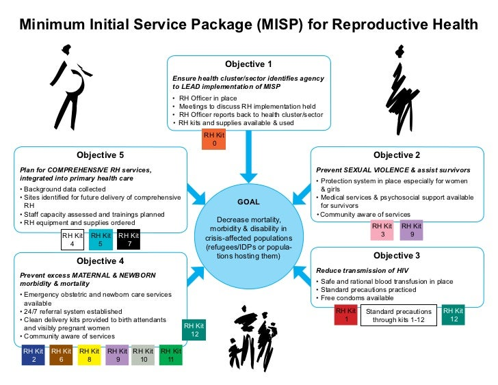 Minimum Initial Service Package (MISP) for Reproductive Health                                                            ...