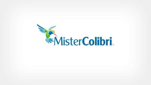 Mister colibri 2013   publicidade
