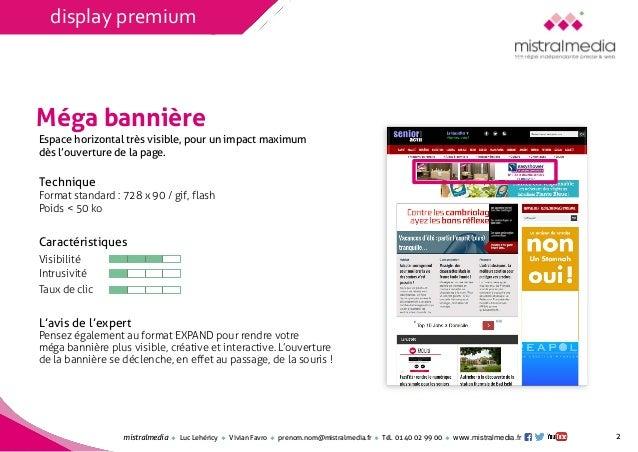 Mistral Media / Les formats de l'e-pub : panorama et efficacité Slide 2