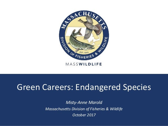 Green Careers: Endangered Species Misty-Anne Marold Massachusetts Division of Fisheries & Wildlife October 2017