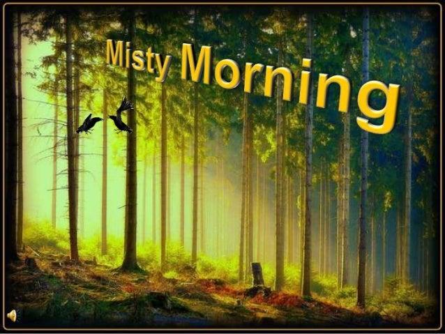 Misty morning (v.m.)