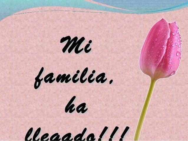 Mifamilia,   ha