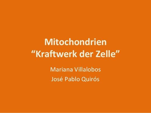 """Mitochondrien """"Kraftwerk der Zelle"""" Mariana Villalobos José Pablo Quirós"""