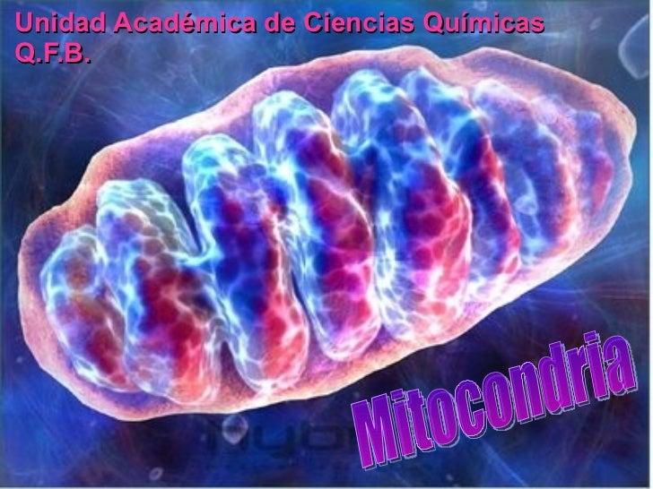 Unidad Académica de Ciencias Químicas Q.F.B.