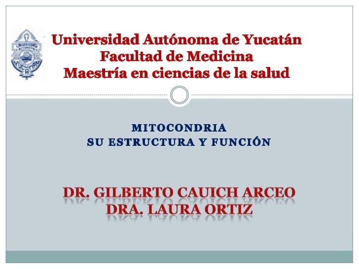 Universidad Autónoma de YucatánFacultad de MedicinaMaestría en ciencias de la salud <br />Mitocondria<br />Su estructura y...